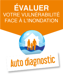 Auto diagnostic
